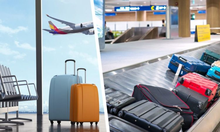 Бесплатного багажа больше не будет: последний лоукостер ввел плату