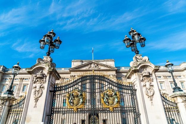 Сад на территории Букингемского дворца откроют для посетителей